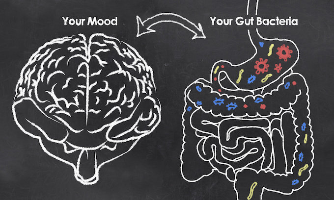Gut Bacteria and Mental Health,How Probiotics Help Reduce Anxiety, Can Eating Fermented Foods Reduce Social Anxiety, What You Can Do to Manage Anxiety, social anxiety and nutrition, sauerkraut anxiety, kefir cured my anxiety, fermented foods, probiotic foods, ultra-jarro-dophilus anxiety, fermented foods and mental health, fermented foods probiotics
