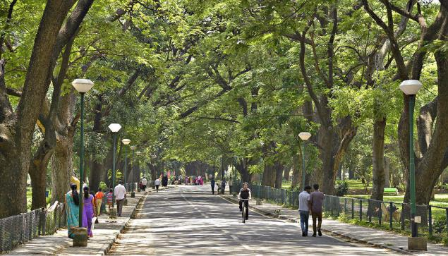 Bangalore's Lung Space
