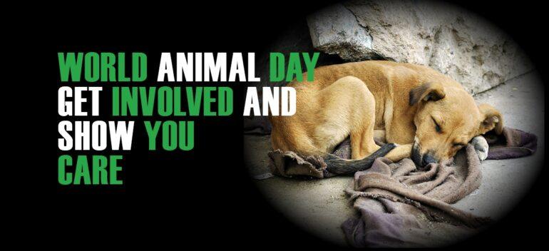 World Animal Day, 2018