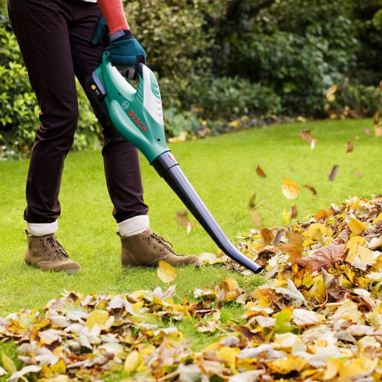 Basic tools for garden cleaning