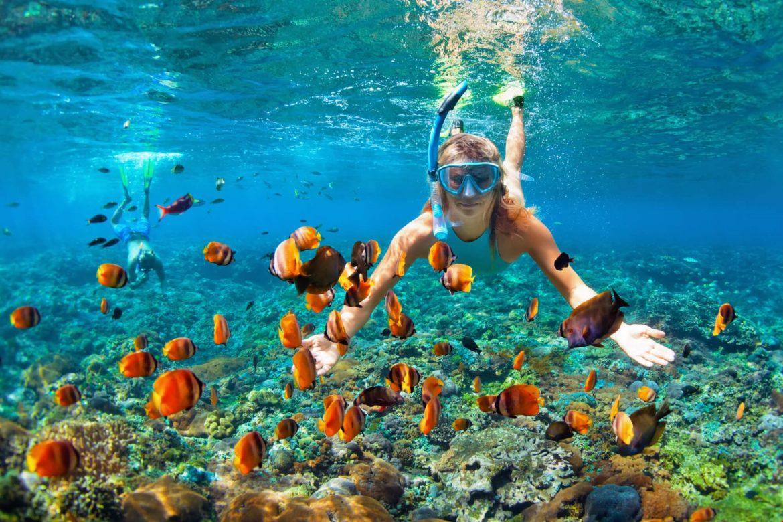 Discover Maui – Why You Need a Car?