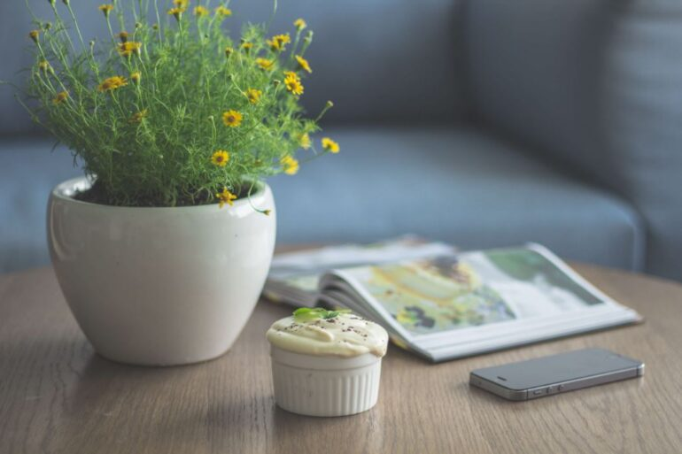 Keeping Flowers in your office – The best choices